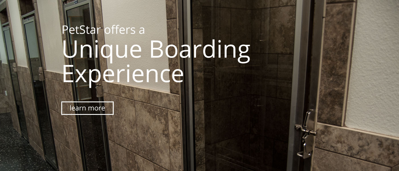 Unique Boarding Experience