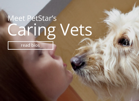 Meet Our Caring Vets